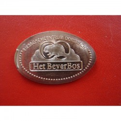 NL - het Beverbos - Biesboschcentrum Dordrecht - cuivre