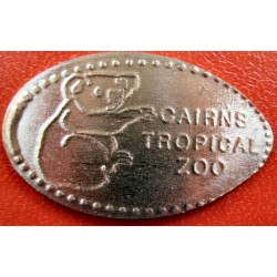 AUS - Cairn Tropical Zoo - Koala - cuivre