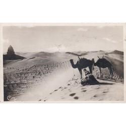 Carte postale - Afrique - Prière au désert - Tunisie