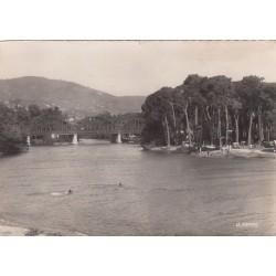 Carte postale - Mandelieu La Napoule - L'embouchure de la Siagne et la pinède
