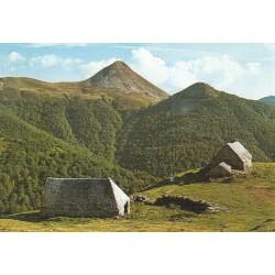 Carte postale - Monts du Cantal - Burons au pied du Puy Griou et Griounot