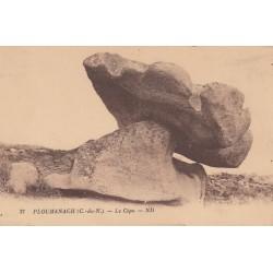 Carte postale - Ploumanac'h - Le cèpe
